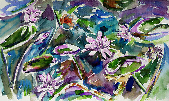 Xueling Zou - Summer Lily Pond