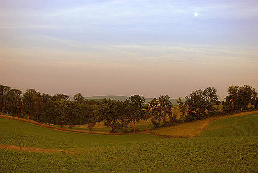 Summer Moon Elegy by M Hess