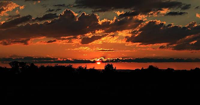 Summer Silhouette Sunset by Candice Trimble