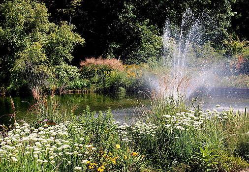 Rosanne Jordan - Summer Spray Garden Pond
