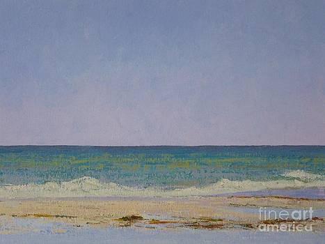 Summer Storm Tidepools by Gail Kent
