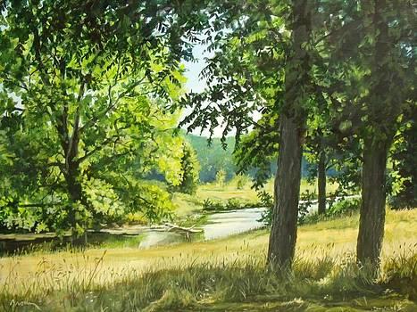 Summer Stream by William Brody