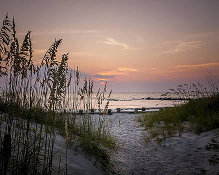 Summer Sunrise by Steve DuPree
