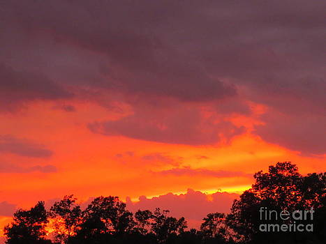 Summer Sunset by David Lankton