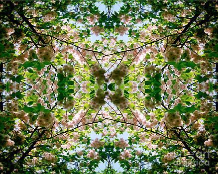 David Hargreaves - Summer Symmetry