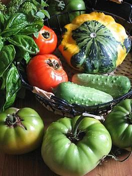 Summer Vegetable Garden  by Deb Martin-Webster