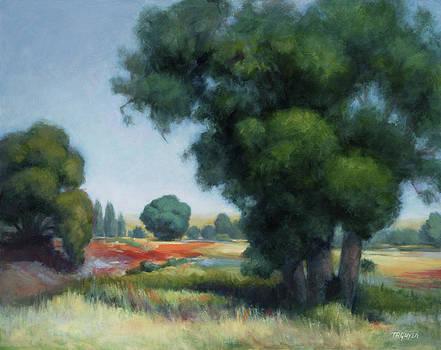 Summer Vista by Terry Guyer
