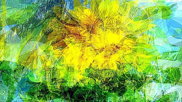 Pauli Hyvonen - Summer wind gust