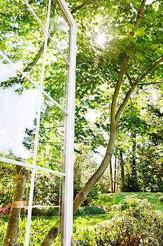 Jo Ann Snover - Summer window