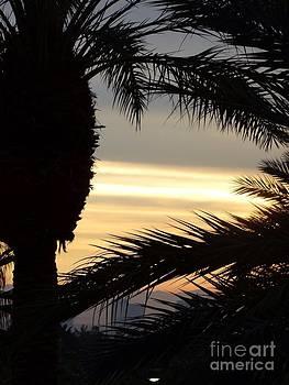 Summerlin Sunset by Linda Xydas