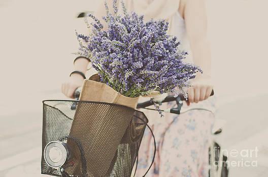 Summertime biking  by Viktor Pravdica