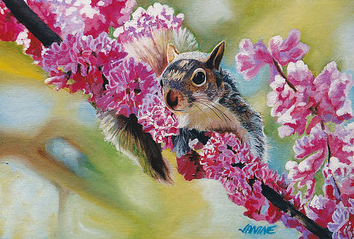 Summertime Squirrel by Janine Hoefler