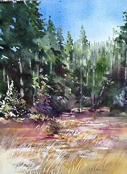 Summit Lake by Karen Lindeman