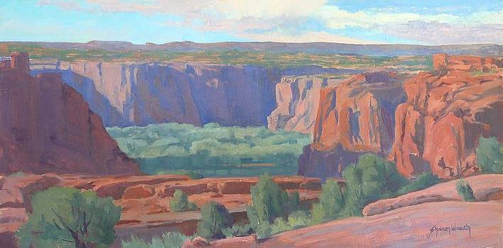 Sun and Shadows Across the Canyon by Sharon Weaver