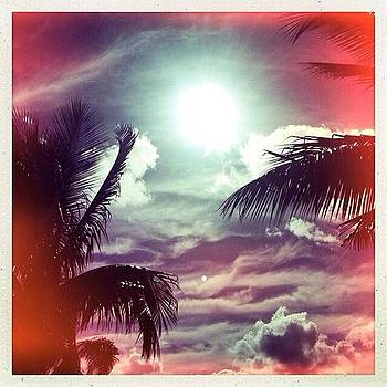 Sun and the Sky by Kerri Green