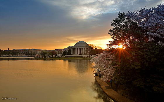 Sun Break at the Tidal Basin by Scott Fracasso