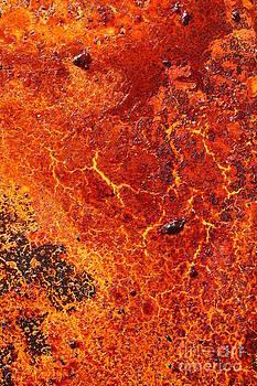 Lisa Payton - Sun Burnt Cracked land