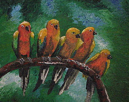 Sun Conure Happiness by Megan Hughes