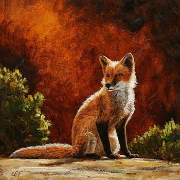 Crista Forest - Sun Fox