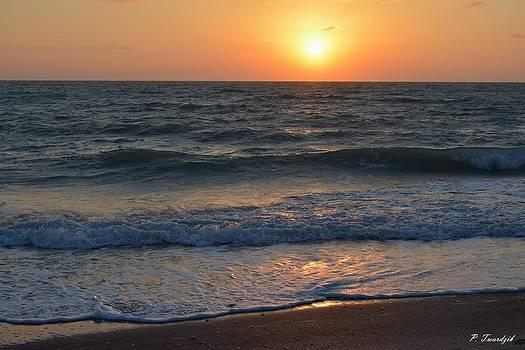 Patricia Twardzik - Sun Glistening on the Water
