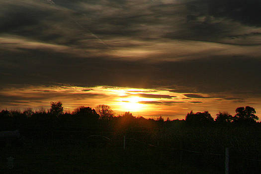 Sun in the fields 02 by Li   van Saathoff