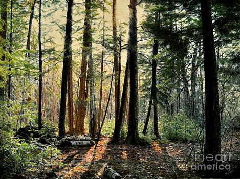Sun in the Hemlocks by Susan Fraser SCA  B Sc