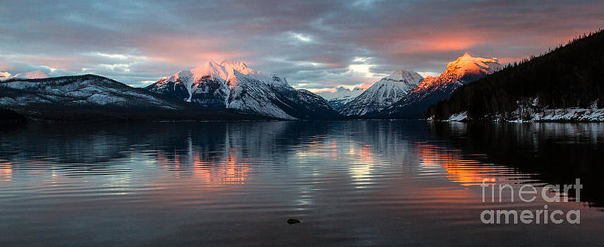 Sun Kissed 2  Pano Crop by Katie LaSalle-Lowery