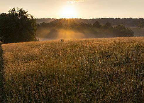Sun on Horizon  by Tim Fitzwater