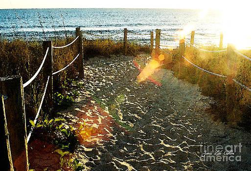 Sun Ray Beach Path by Janis Lee Colon