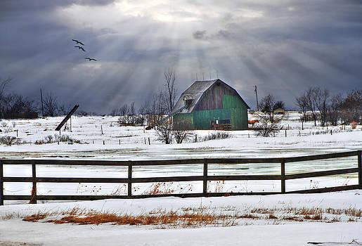 Sun Rays by David Simons