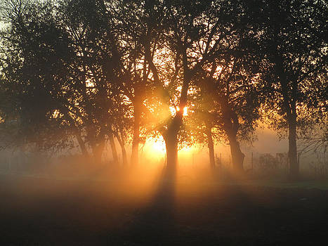 Sun rise in San Marcos by Kevin Caudill