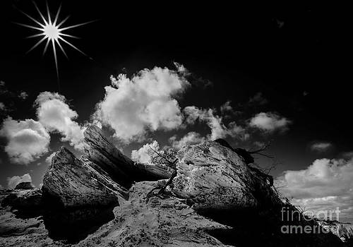 Sun Rocks and Shadows by Julian Cook