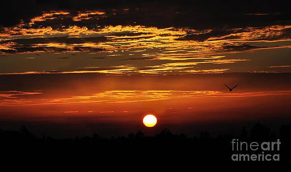Manjot Singh Sachdeva - Sun Set In Rainy Days