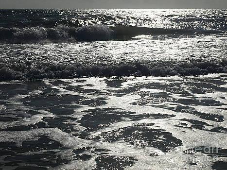 Sun Surfing by Virginia Zuelsdorf