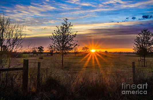 Sun Up in Southern Texas by Bob Marquis