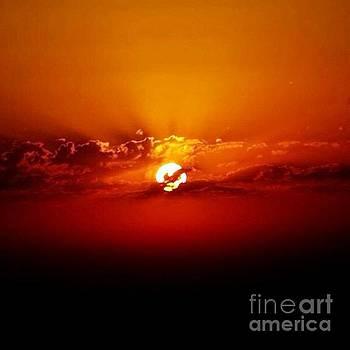 Sun Rays by Alejandra Flores