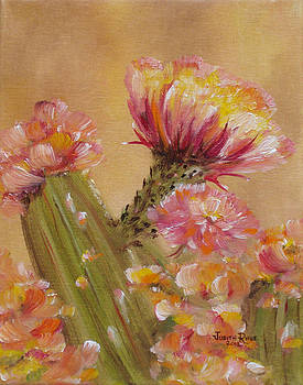 Sun Worshipper by Judith Rhue