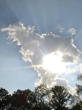 Sunburst Fayetteville by Carli Tolmie
