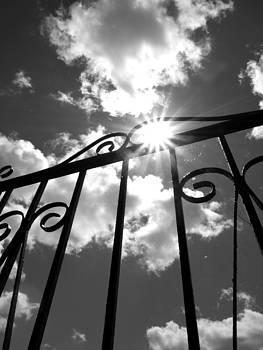 Sunburst Fence by Laura Lovell