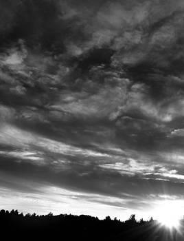 Sunburst  by Katina Borges