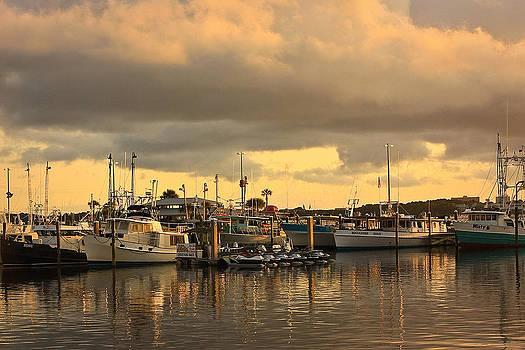 Sundown in the Bay... by Tammy Schneider