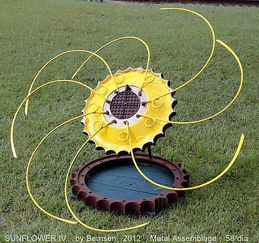 Sunflower 2012 by Bill Bernsen