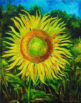 Sunflower by Brandi  Hickman