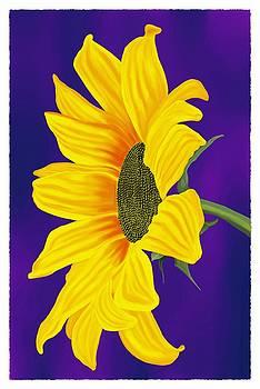 Sunflower by Britton Britt Cagle