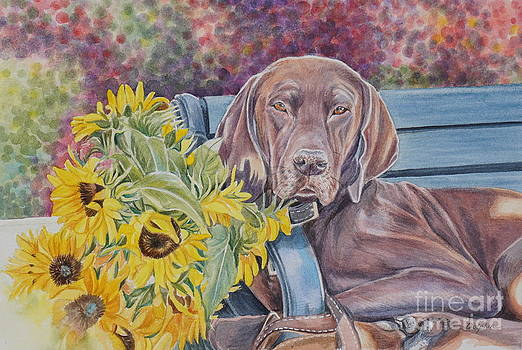 Sunflower Dog by Gail Dolphin