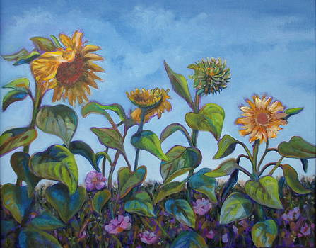 Sunflower Field by Karen McKean
