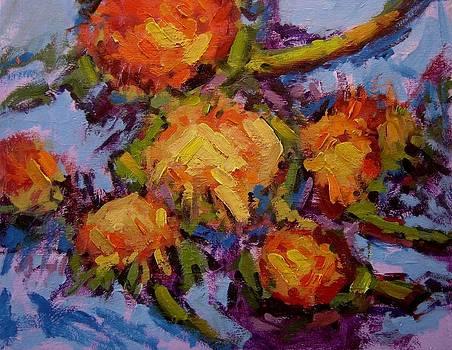 Sunflower heads II by R W Goetting