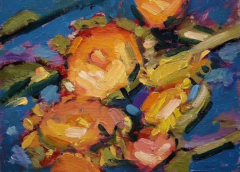 Sunflower heads by R W Goetting