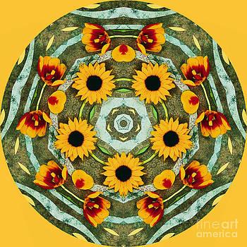 Sunflower Kaleidoscope by Jennifer Reitmeyer