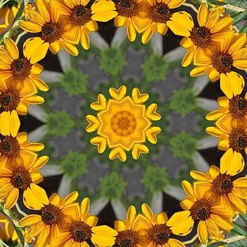 Valerie Kirkwood - Sunflower Kaleidoscope